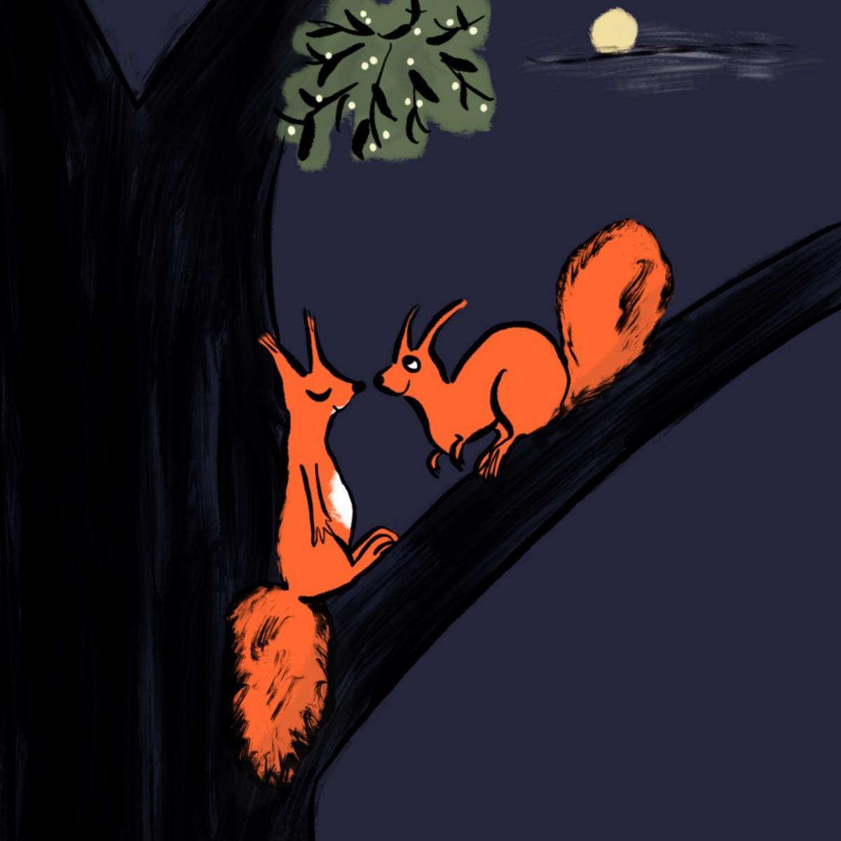 Eichhörnchenliebe